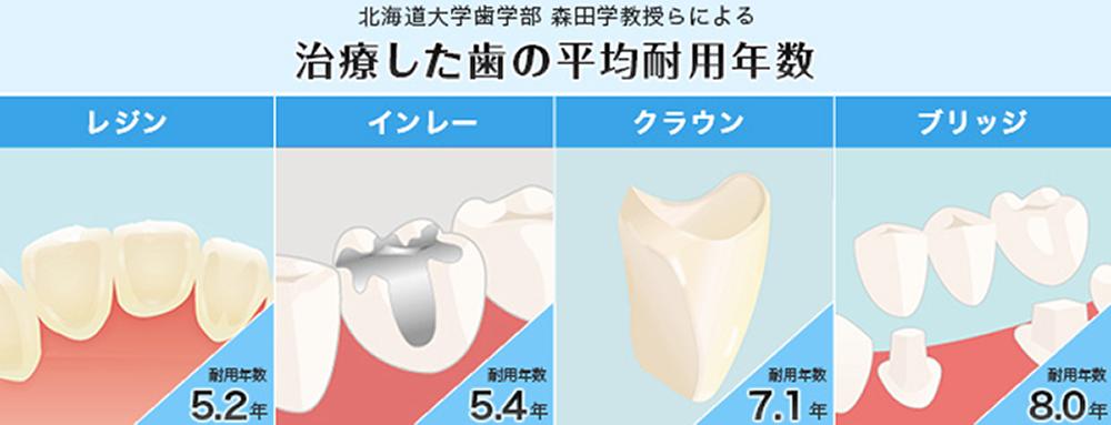 治療した歯の平均耐用年数
