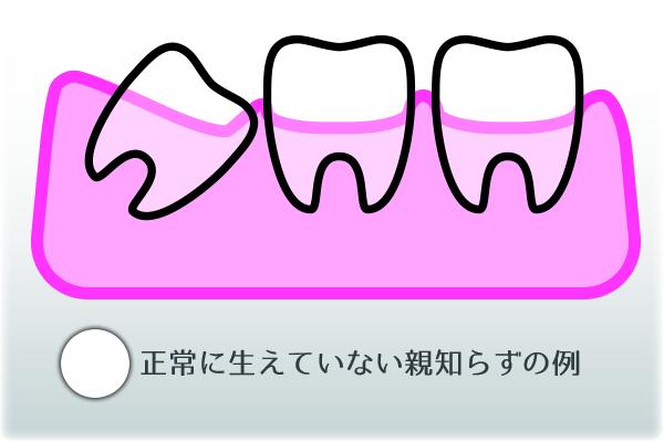 oyashirazu02